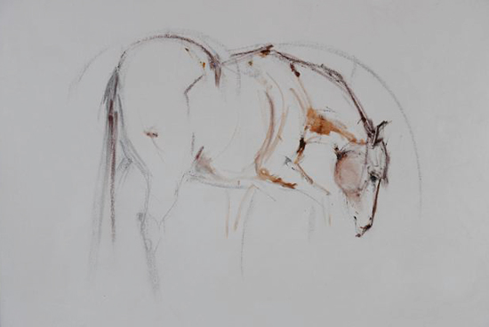 Drawing Smooth Lines Canvas : Line drawing on canvas original equestrian art for sale