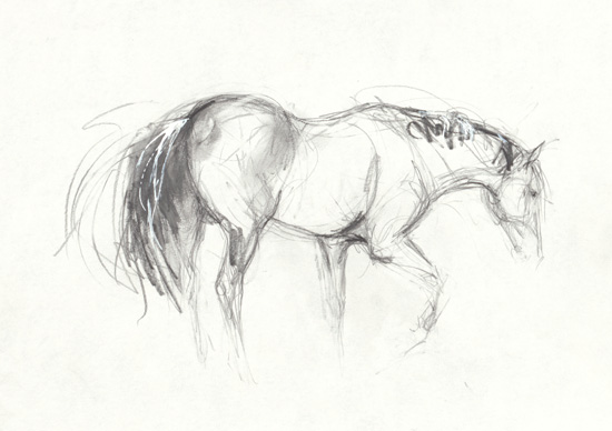 Small drawing 11 2011 original equestrian art for sale for Small art drawings