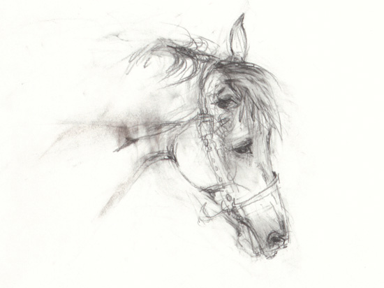 Small drawing 6 2011 original equestrian art for sale for Small art drawings