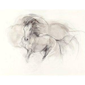 Sepia Drawing