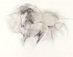 Sepia Drawing (2011)