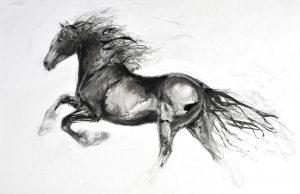 Lydia Kiernan Equestrian Art