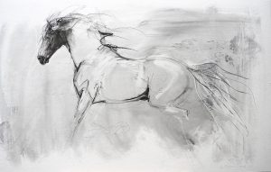 Horse With Dark Head (2016)