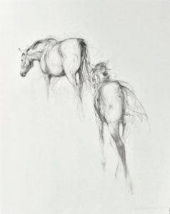 Mare And Foal Walking Away (2013)