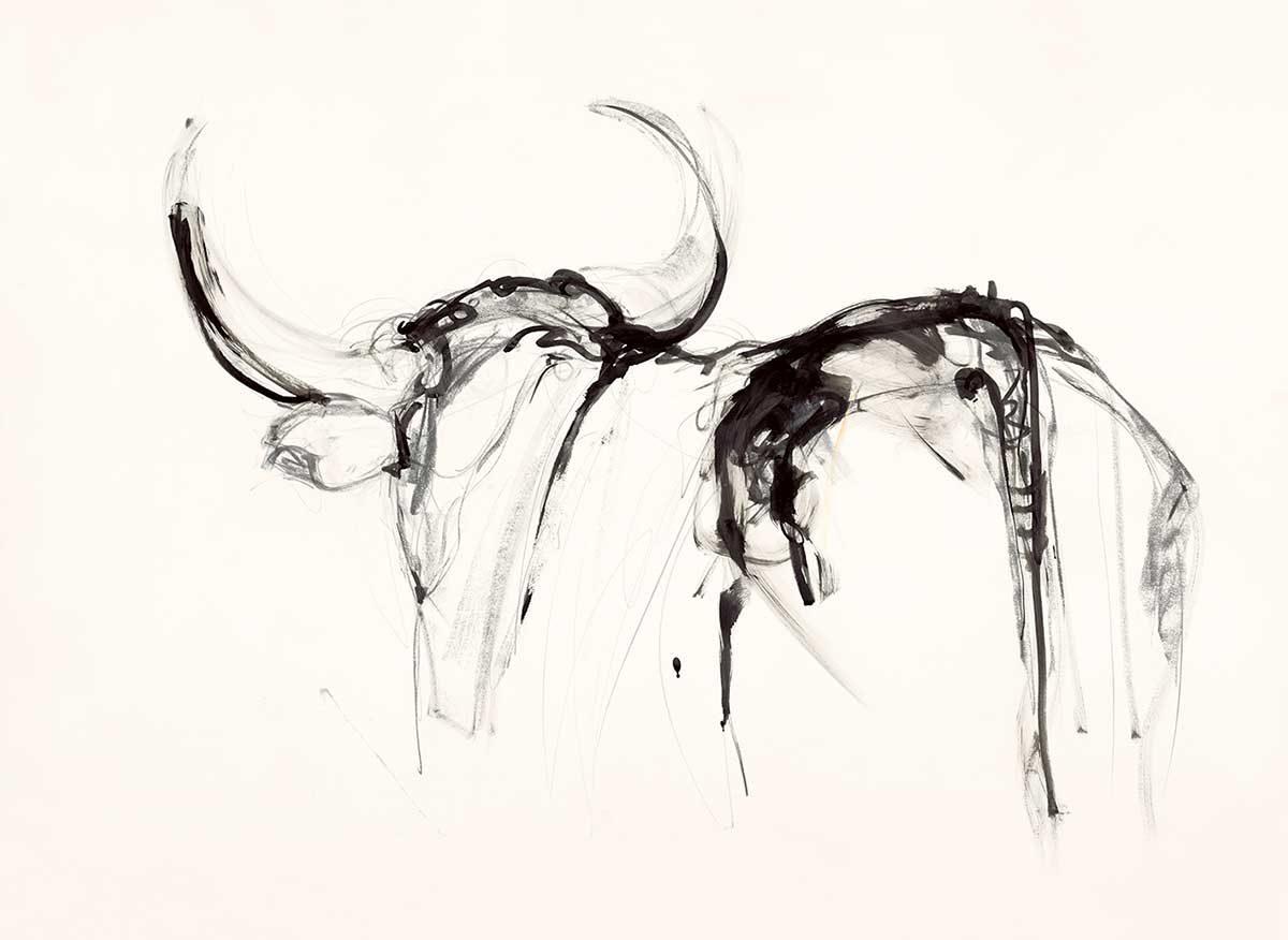 Ink Bull