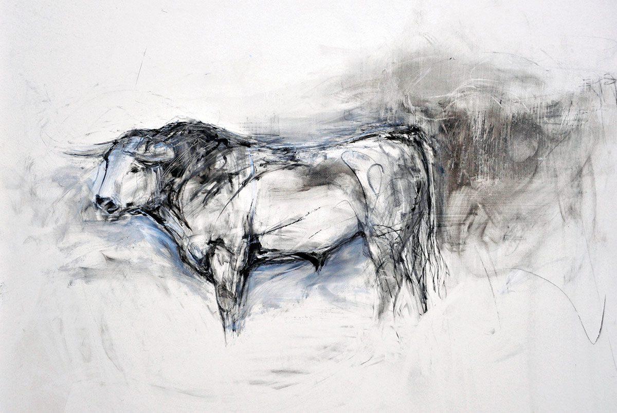 Spanish Bull (Standing)
