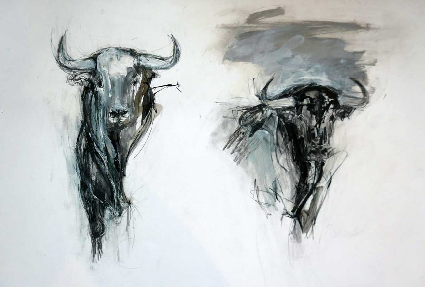 2 Bulls with Ink no 2