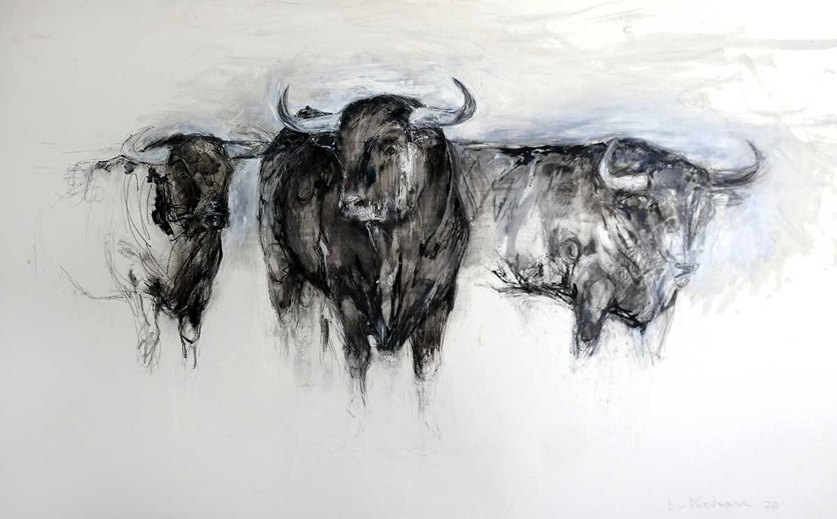 3 Bulls