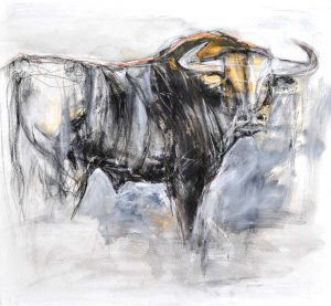 Bull Looking Round