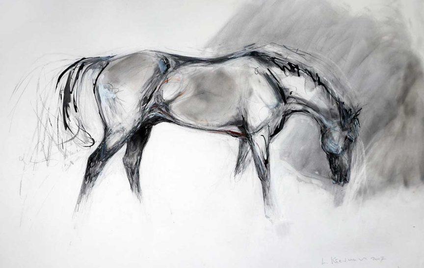 Event Horse ll