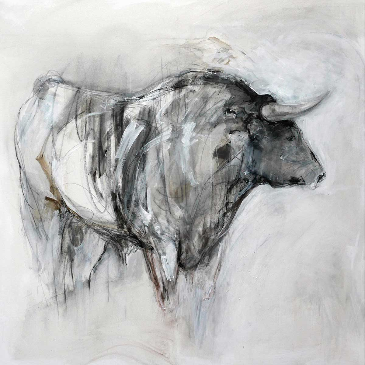 Grey Bull