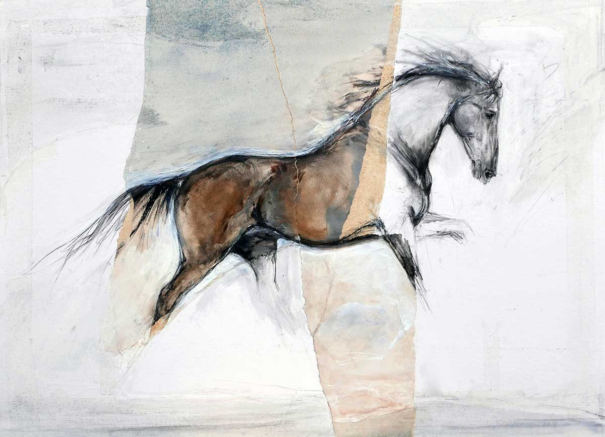 Single Horse Collage