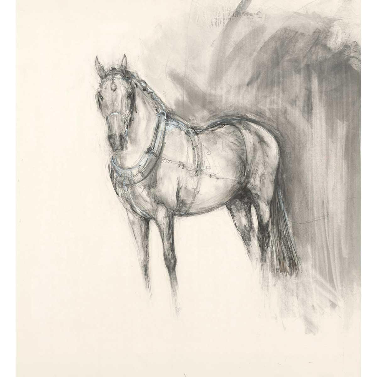 Spanish Carriage Horse Front View Lydia Kiernan Art