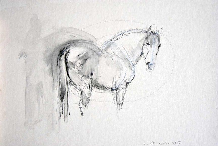 Spanish Horse – Sketch