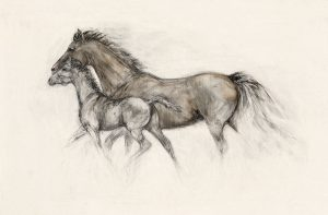 The Filly Foal