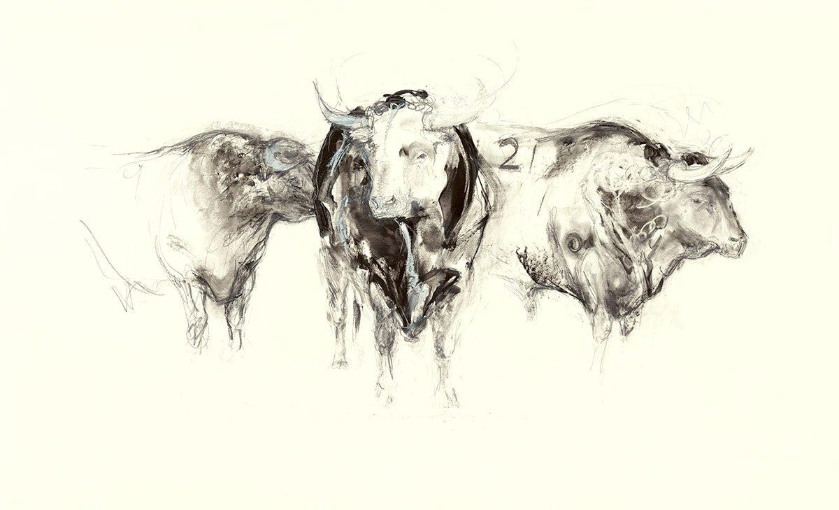 Three Spanish Bulls