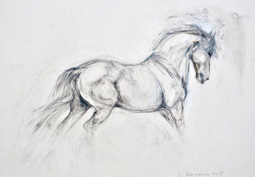 Drawing V