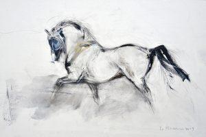Drawing VII