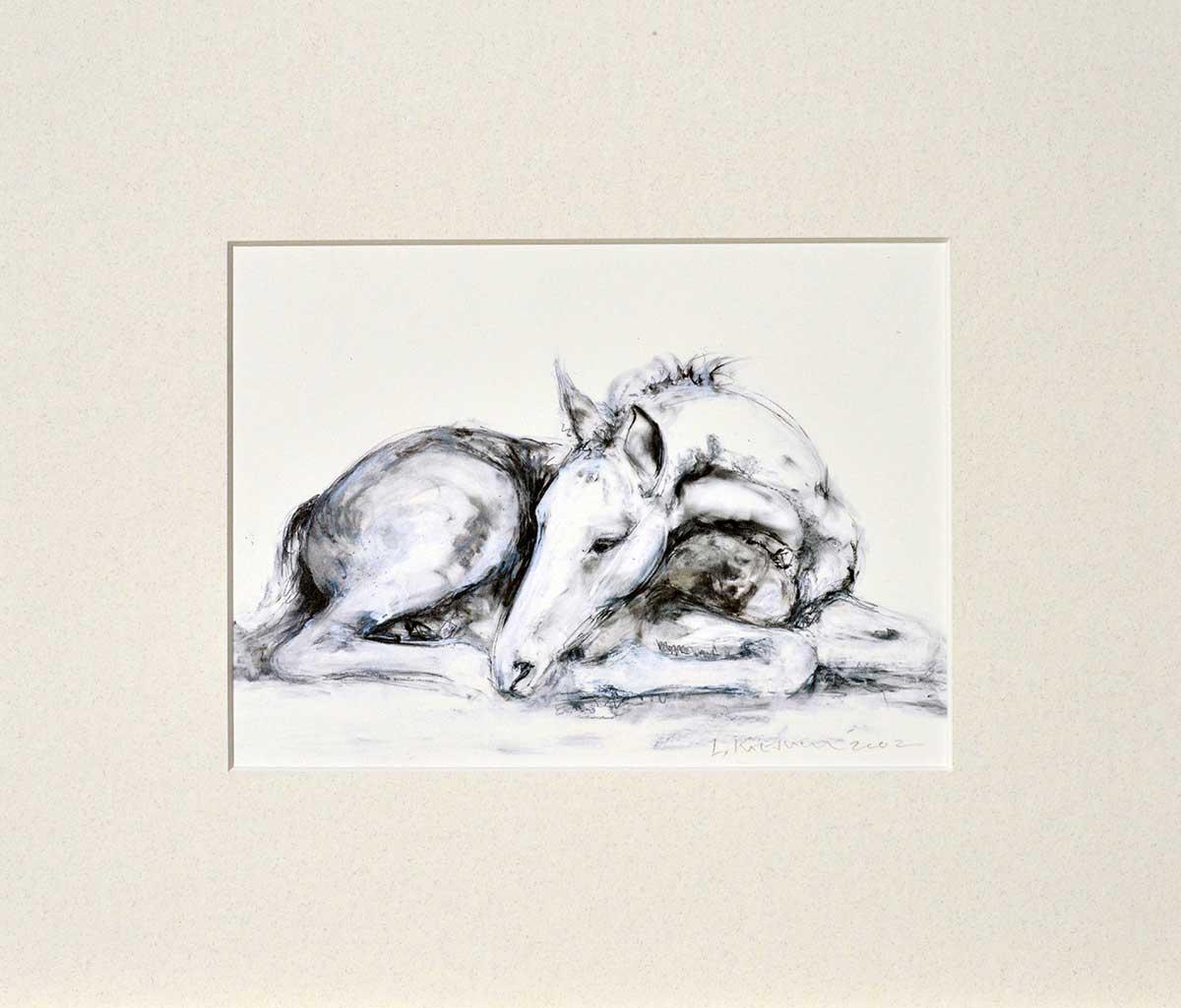 Lying Foal mounted print