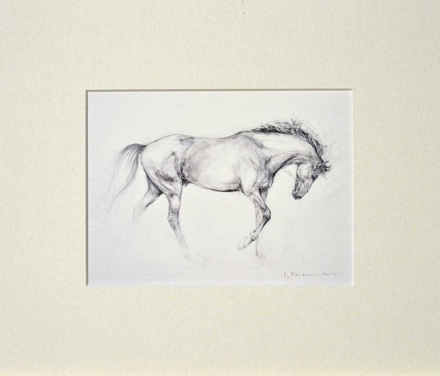 no3 mounted print