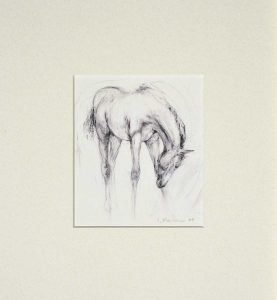 The Foal mounted print